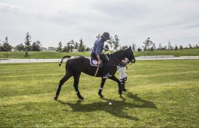 Learning how to play polo